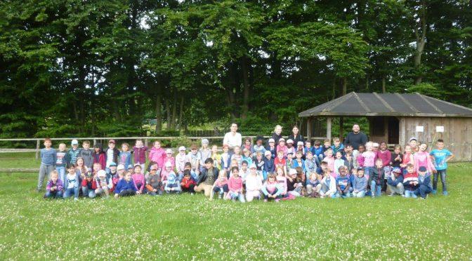 04.07.2017 – Ausflug der Vorschulklassen